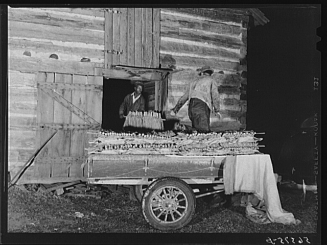 Many of the farmers who sell their tobacco at the first sale in the warehouses must pack it in their trailers from their strip houses and barns at night, to take it to market and get it on the floor in time. This is on Emery Hooper's farm near Hightowers and Prospect Hill, Caswell County, North Carolina