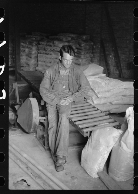 Migrant boy employed in fruit packing plant, Berrien County, Michigan