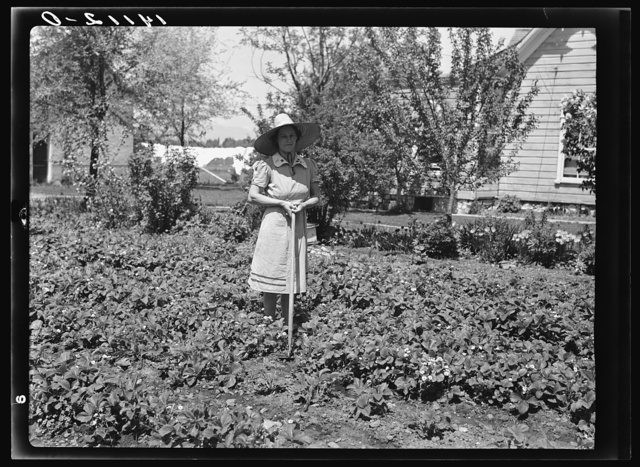 Mrs. Marion E. Cox, wife of a Cache County, Utah, Farm Security Administration Rehabilitation borrower, stands in the large home garden she has built up as a part of her home management plan