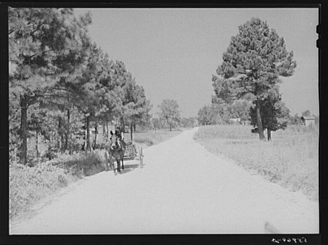 Negro driving wagon along country road to store on Saturday. Near Farrington, Chatham County, North Carolina