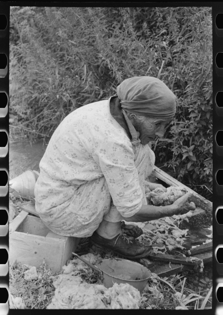 Old Spanish-American woman washing wool in irrigation ditch, Chamisal, New Mexico