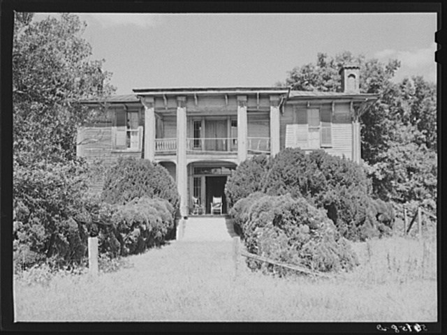Old Thompson residence with boxwood near Milton, Caswell County, North Carolina