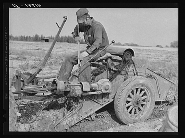On a tractor-drawn potato digger on a farm near Caribou, Maine