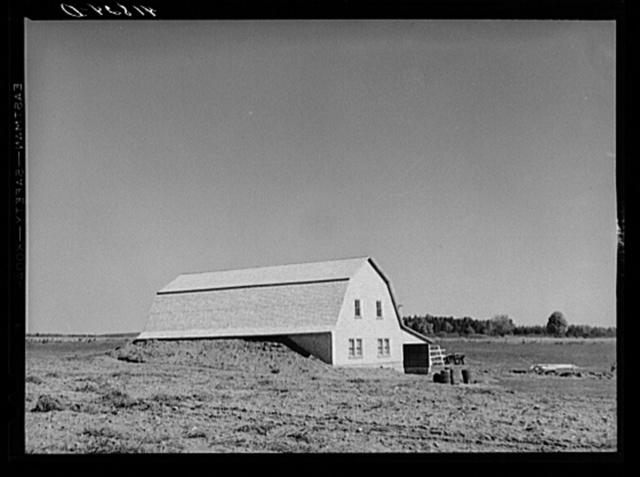 Potato storage barn on a field near Caribou, Maine. The earth is built up around the sides to provide a more even temperature throughout the year