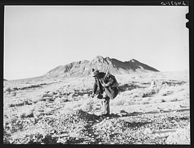 Prospector in the desert. Esmeralda County, Nevada