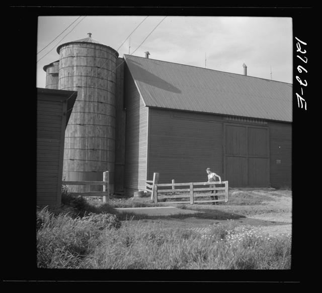 Prosperous dairy farm near Bristol, Vermont