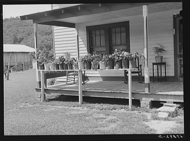 Prosperous farmer's porch of his home with plants in painted lard buckets near Morehead, Kentucky