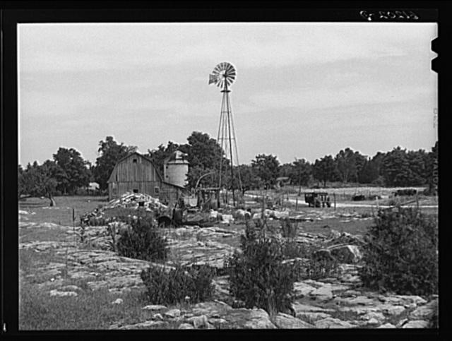 Rocky farmland. Door County, Wisconsin