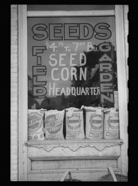 Seed store window, Grayville, Illinois