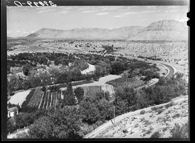Small, irrigated, very productive farm. Santa Clara, Utah. See general caption