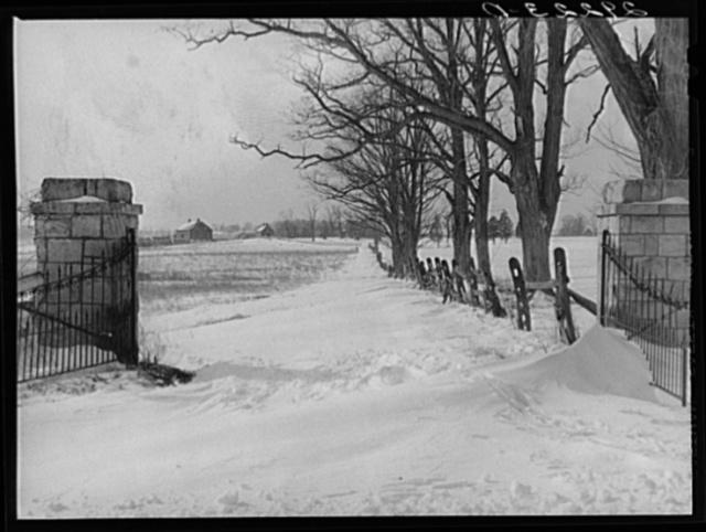 Snowbound farm. Montgomery County, Maryland