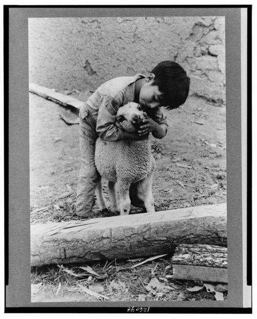 Spanish-American boy with lamb, Amalia, New Mexico
