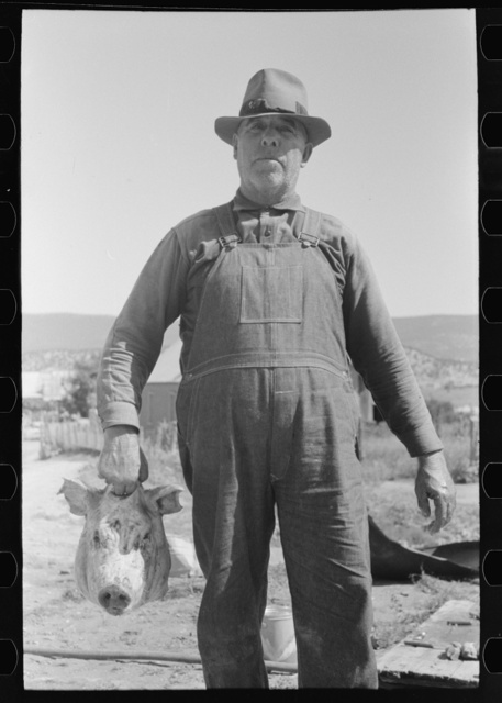 Spanish-American farmer with head of slaughtered hog. Chamisal, New Mexico