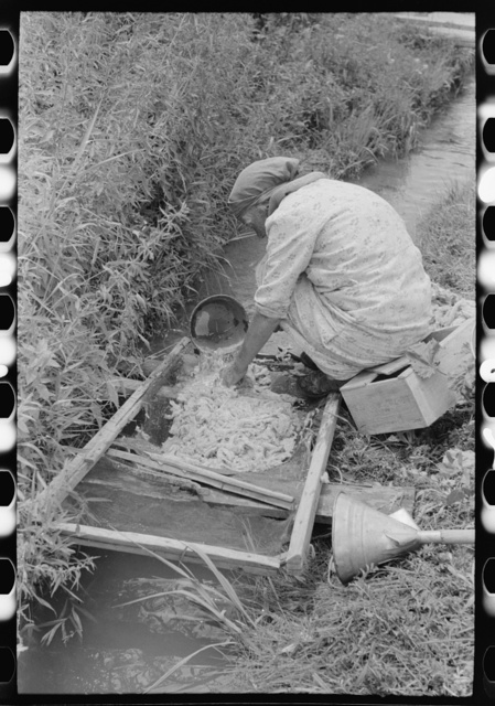 Spanish-American woman washing wool in irrigation ditch, Chamisal, New Mexico. Raw wool is used to stuff matresses
