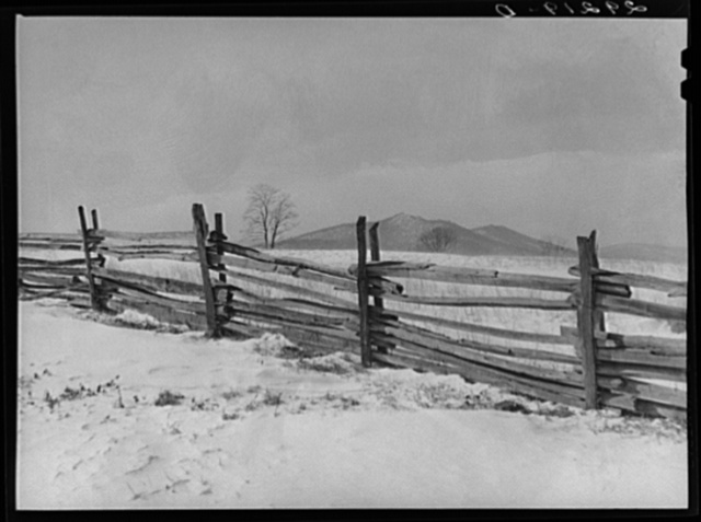 Split rail fence. Rappahannock County, Virginia