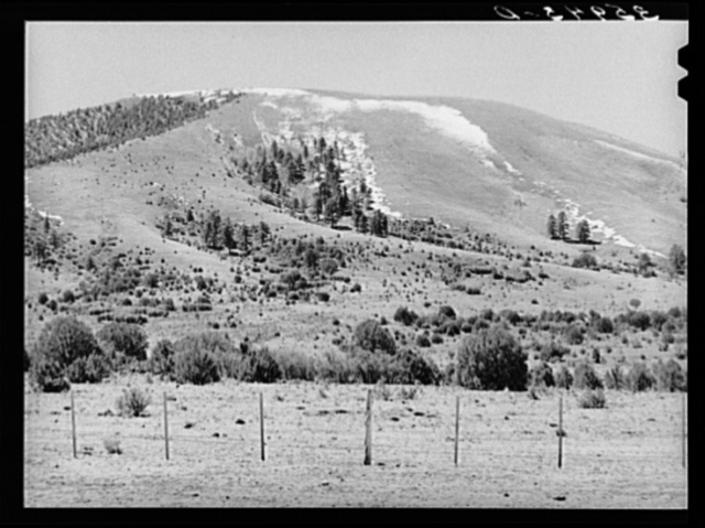 Spring snow on mountains provide water for the range below. Apache County, near Springerville, Arizona