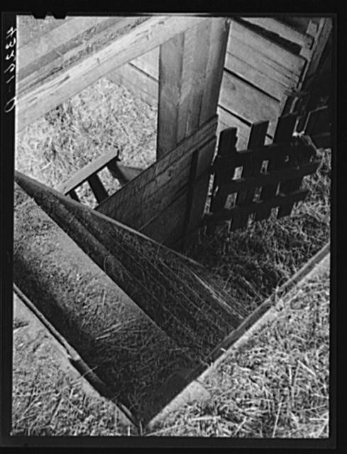 Stairs in barn. Farm near Rockville, Maryland
