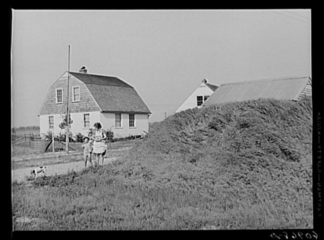 Storage house with grass embankment. Deshee Unit, Wabash Farms, Indiana