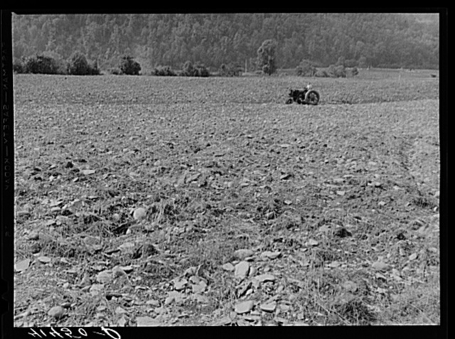 Tilling field, showing rocky soil along Route 34, three miles north of Spencer, New York