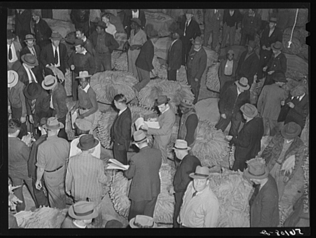 Tobacco auction in warehouse in Danville, Virginia, where many Caswell County farmers sell their tobacco at auction