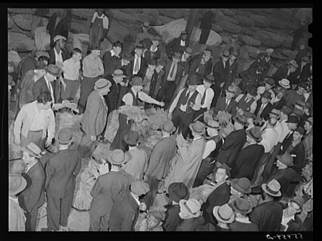 Tobacco auction in warehouse in Danville, Virginia where many Caswell County farmers sell their tobacco at auction. North Carolina