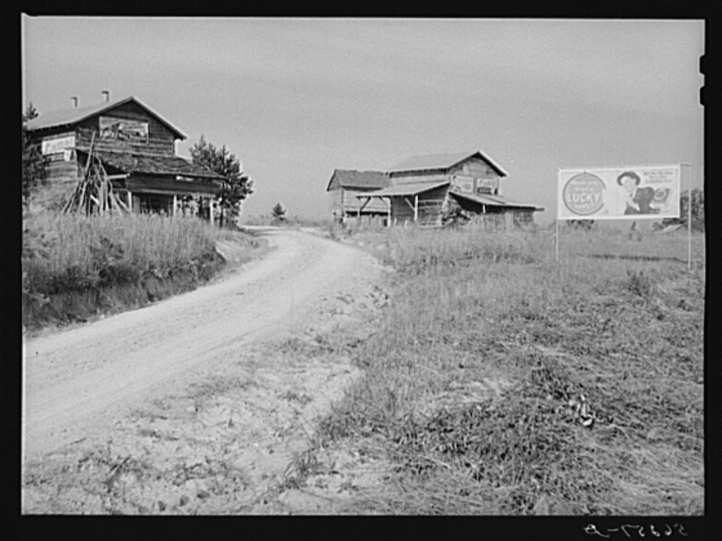 Tobacco barns and cigarette advertisements on country road in Prospect Hill section. Caswell County, North Carolina