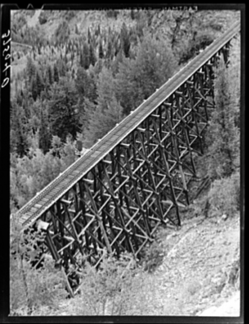 Trestle of narrow gauge railroad near Ophir, Colorado