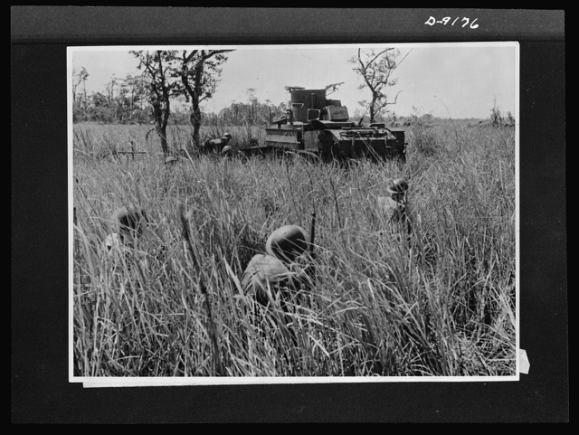Troops in Australia. Under cover of tall grass, Australian troops crouch behind an American light tank in fighting at Buna. This picture, taken during actual warfare, shows infantrymen following up the tank as it advances to clear out Japanese pillboxes on the edge of Semini Creek