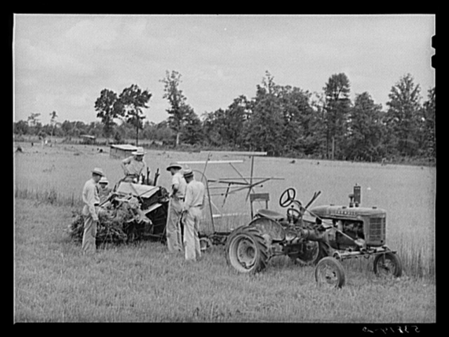 Willy Roberts, county supervisor, examining co-op binder purchased by J.M. Womack, FSA (Farm Security Administration) borrower who is harvesting oats for Robert J. Waller, another FSA borrower. Oak Grove, West Carroll Parish, Louisiana