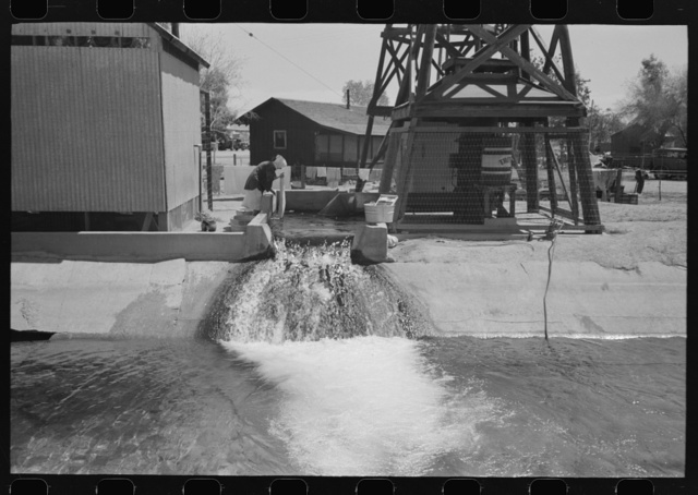 Woman washing clothes at deep well which also feeds the irrigation ditch, Maricopa County, Arizona. This water comes out of the ground hot enough for laundry purposes