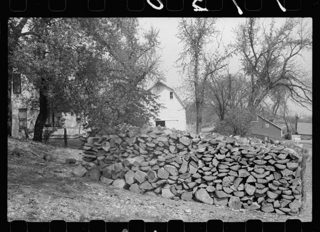 Woodpile on Danish farm, Monona County, Iowa