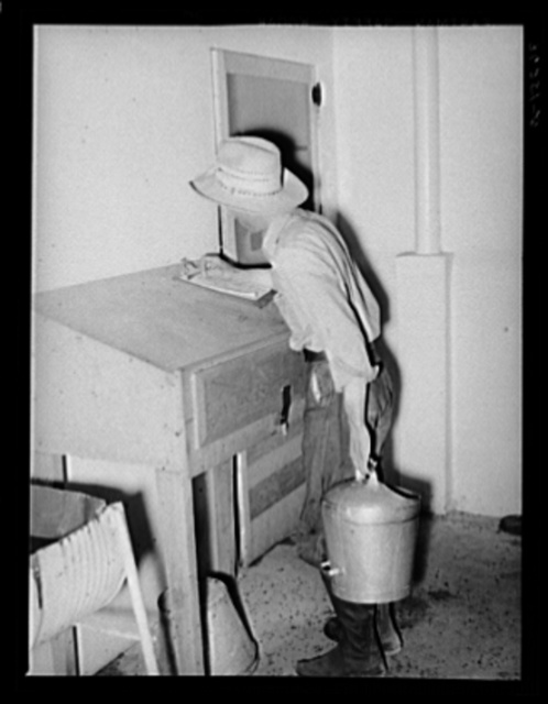 Writing down weight of milk given by one cow at the Casa Grande Valley Farms. Pinal County, Arizona. Exact and completed milk records are kept on all dairy cows