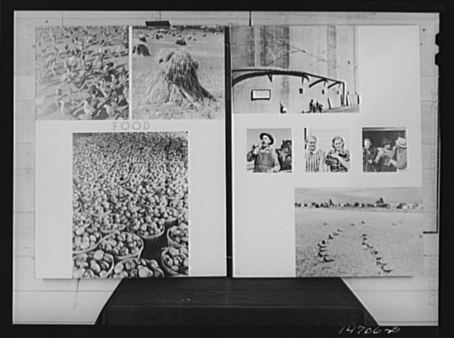 """A panel from an exhibit """"In the Image of America,"""" designed by the Farm Security Administration as part of the Science and Industry Exhibit held in Rockefeller Center, New York City, in 1941"""
