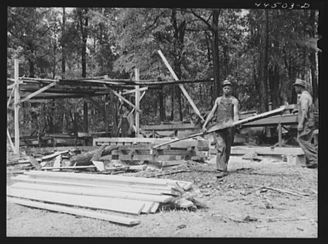 A small sawmill workings in southern Greene County, Georgia
