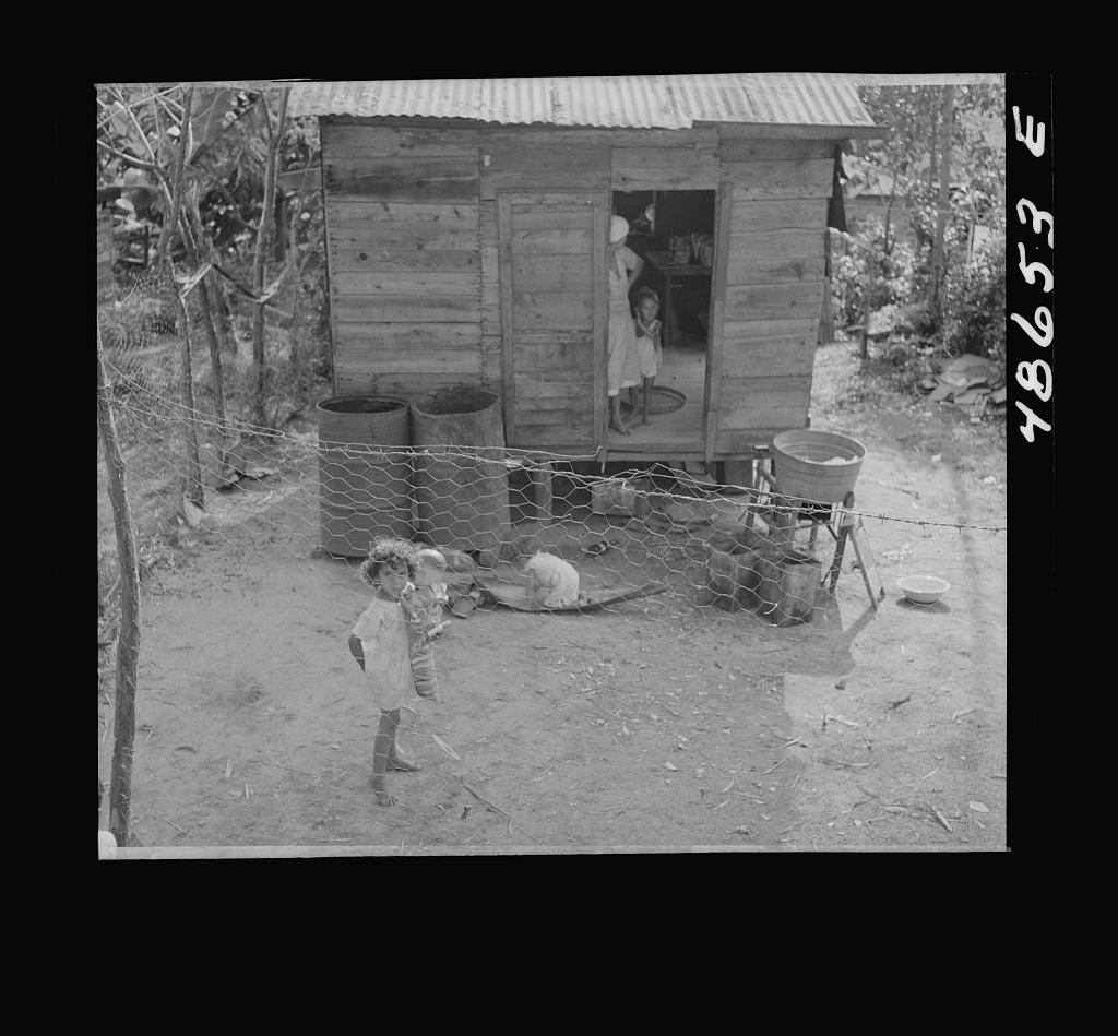 Bayamon, Puerto Rico. Children in a backyard