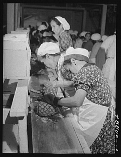 Bayamon, Puerto Rico (vicinity). A pineapple canning factory