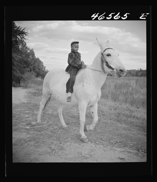 Boyd Jones riding one of his father's mules on their farm in Greene County, Georgia