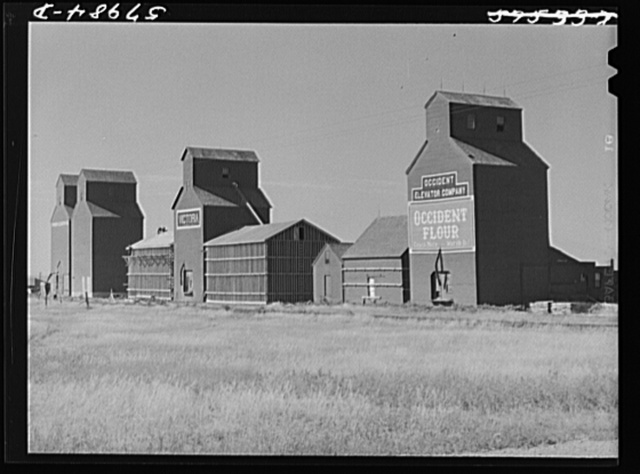 Building additional storage space for bumper wheat crop. Grain elevators in Homestead, Montana