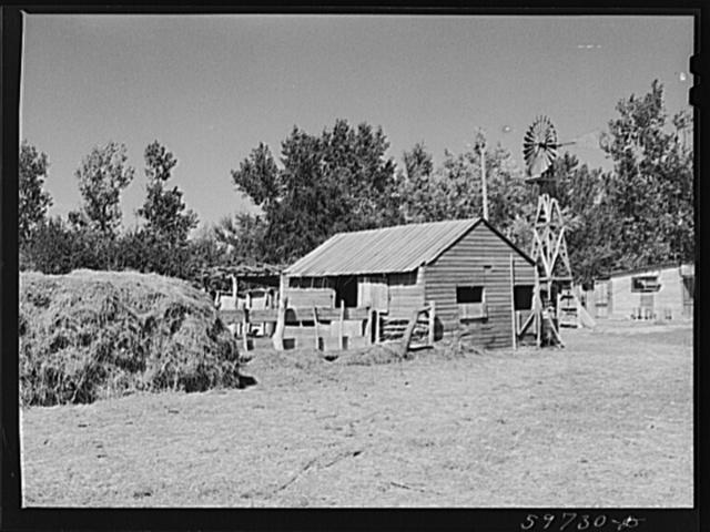 Buildings on A.E. Scott's farm northeast of Scottsbluff, Nebraska (see general caption number one)