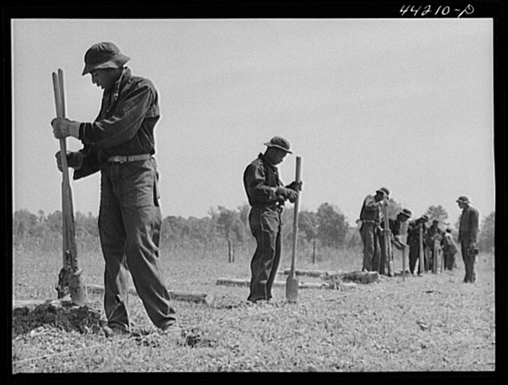 CCC (Civilian Conservation Corps) boys putting up a fence. Greene County, Georgia