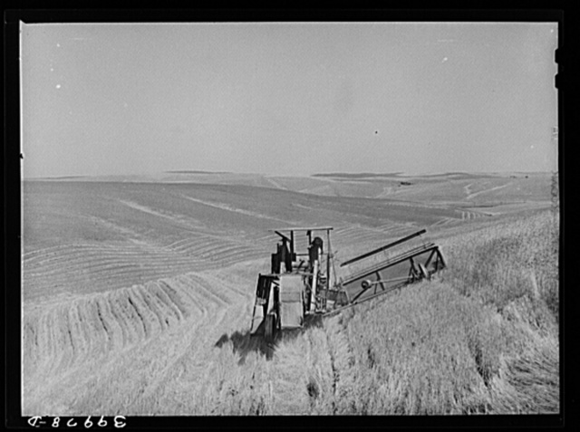 Combine in the wheat. Whitman County, Washington. About ninety percent of the land in this county is under cultivation. Wheat and livestock are principal crops