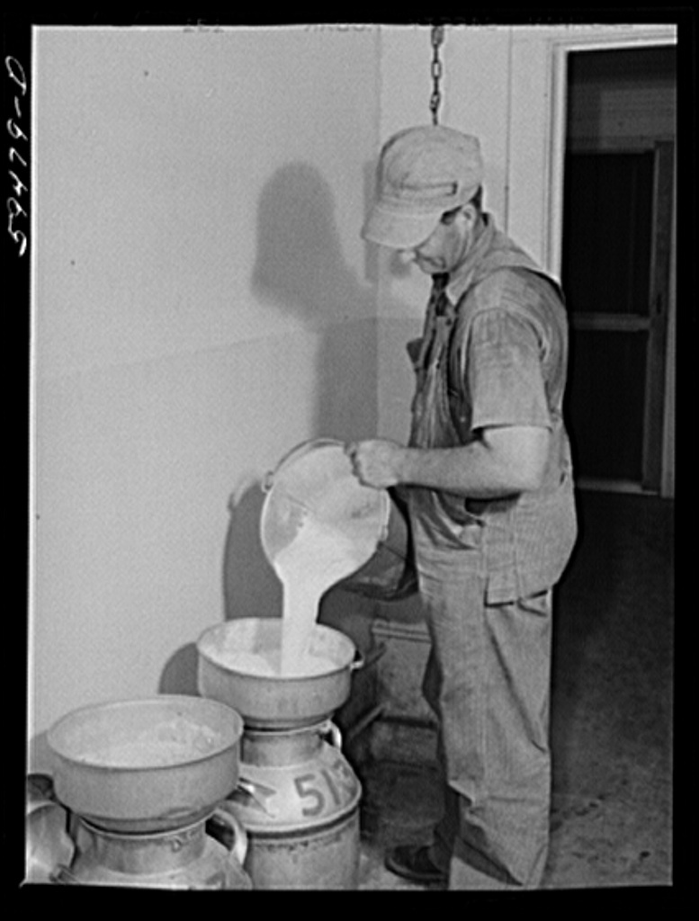Don Shinaut, in charge of dairy enterprise, pouring milk into cans at Two River Non-Stock Cooperative, Waterloo, Nebraska. This is a FSA (Farm Security Administration) coop (see 59454-D)