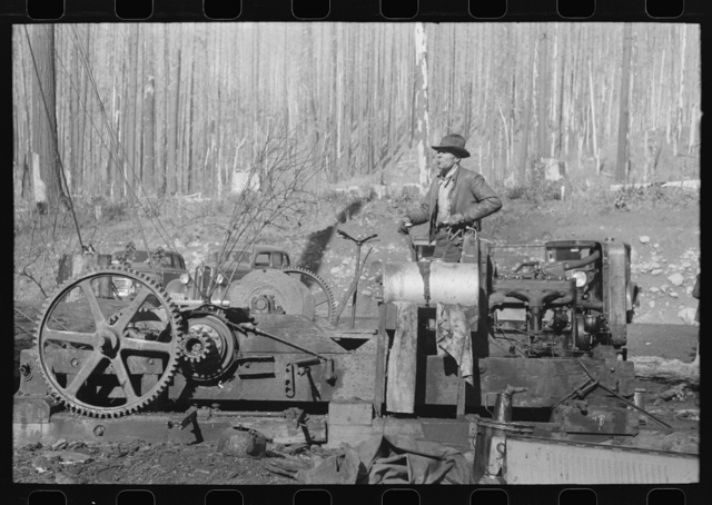 Donkey puncher at gyppo logging operations, Tillamook County, Oregon