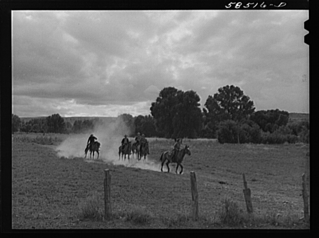 Dudes returning from a morning's ride across the range. Quarter Circle U, Brewster-Arnold Ranch Company. Birney, Montana