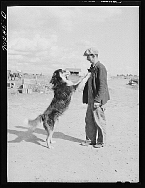 Farmer and his dog. Yakima County, Washington