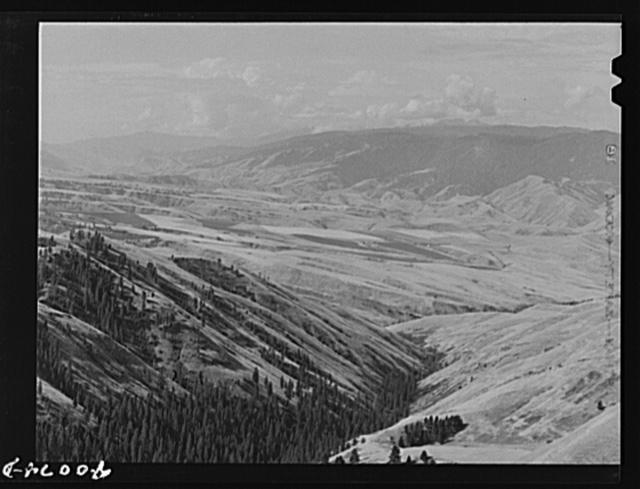 Farming land as seen from Whitebird Hill. Idaho County, Idaho