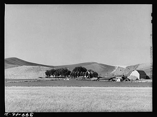 Farmstead and wheat land. Whitman County, Washington