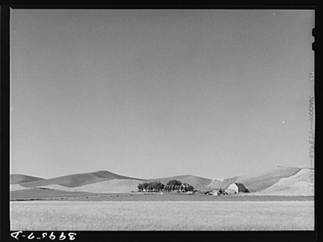 Farmstead and wheatland. Whitman County, Washington