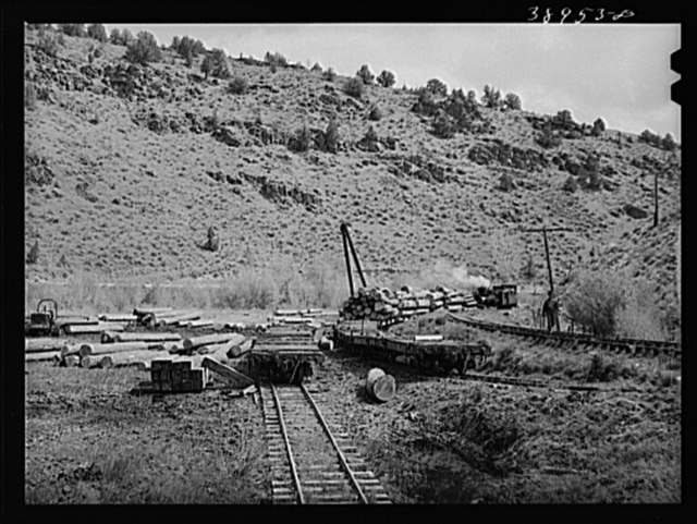Flat cars of narrow gauge railroad loaded with logs from the surrounding mountains. Baker County, Oregon