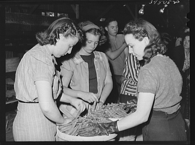 "Girls ""dressing"" crates of peas for shipment. Canyon County, Idaho"